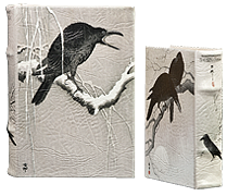 Book-Box-Vermeer-Crows-Thumbnail