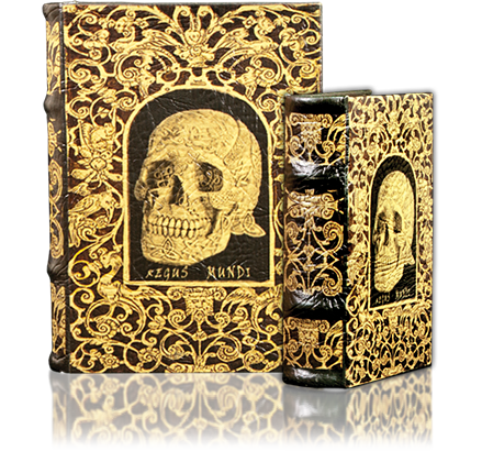 Book-Box with Skull